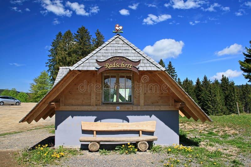 远足印象在黑森林在德国 库存照片