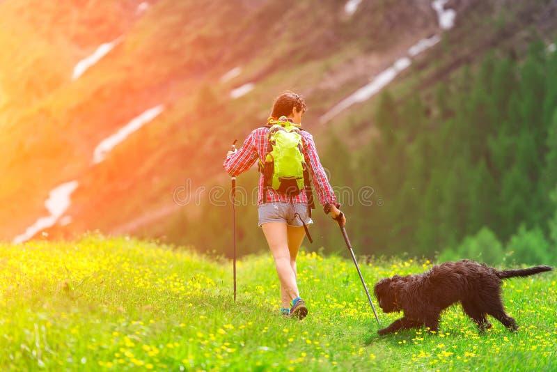 远足在与他的狗的山 免版税库存照片