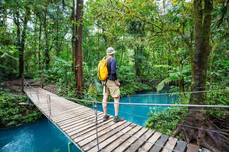 远足在哥斯达黎加 免版税库存图片
