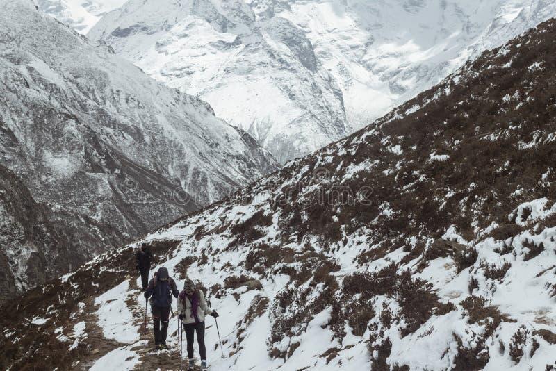 远足在喜马拉雅山的雪 免版税库存照片