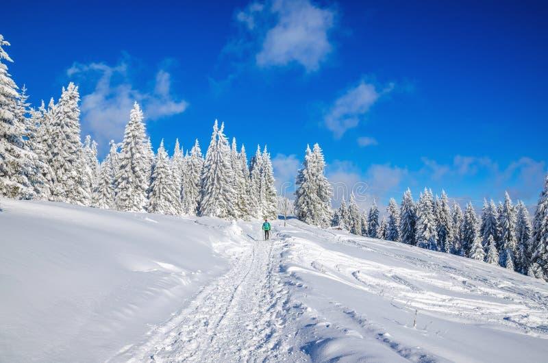远足在山的冬天路与雪 免版税库存图片