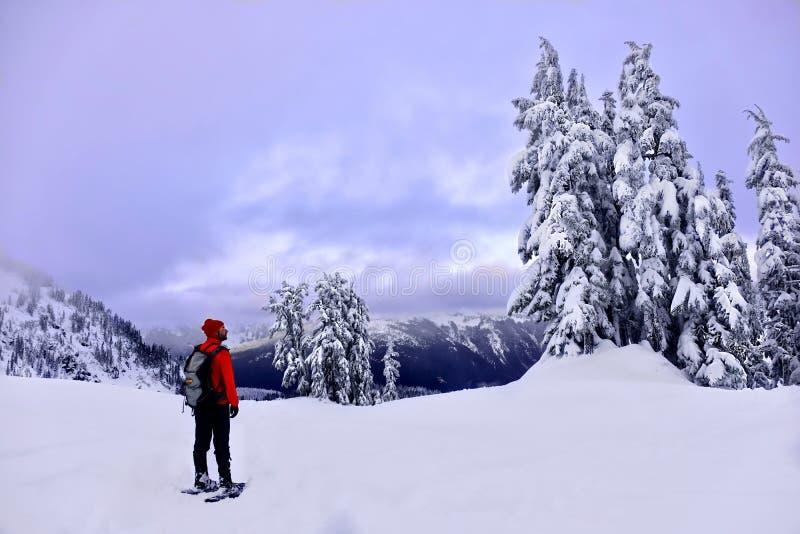 远足在山的冬天雪靴 库存图片