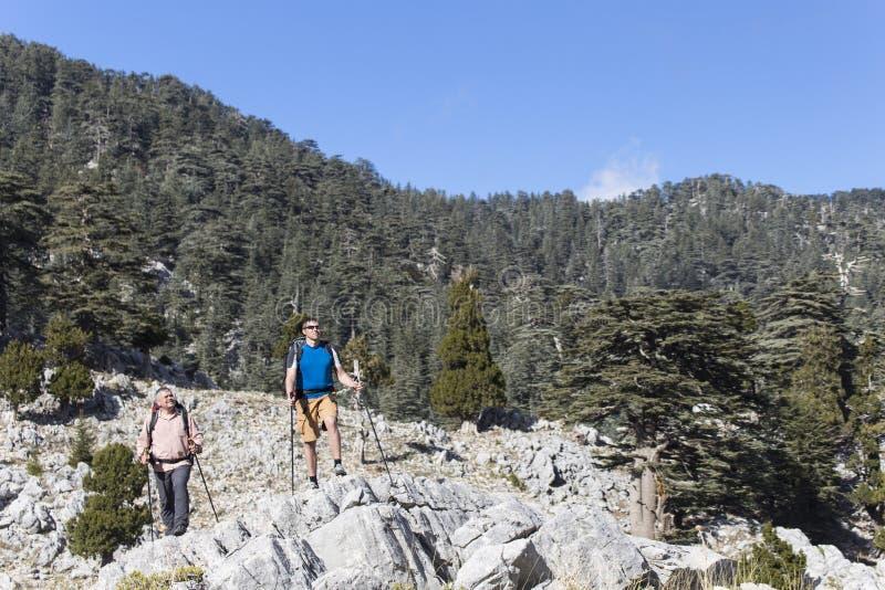 远足在山的夏天 免版税图库摄影