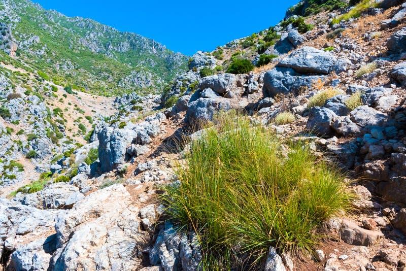远足在摩洛哥的里夫山脉山在舍夫沙万市下,摩洛哥,非洲 免版税库存图片