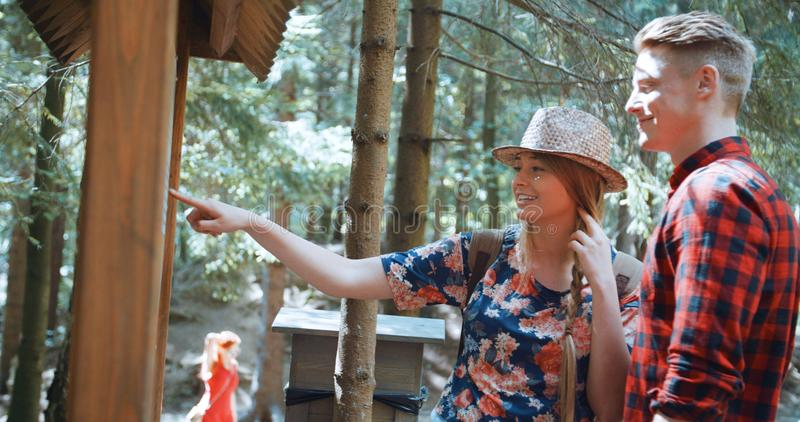 远足在森林里的美好的白种人夫妇在晴天期间 免版税库存图片