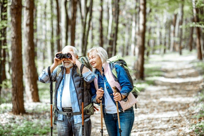 远足在森林里的资深夫妇 库存图片
