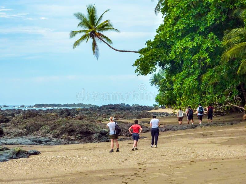 远足在Corcovado国家公园-哥斯达黎加 免版税图库摄影