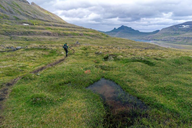 远足在Horstrandir国家公园,冰岛 免版税图库摄影