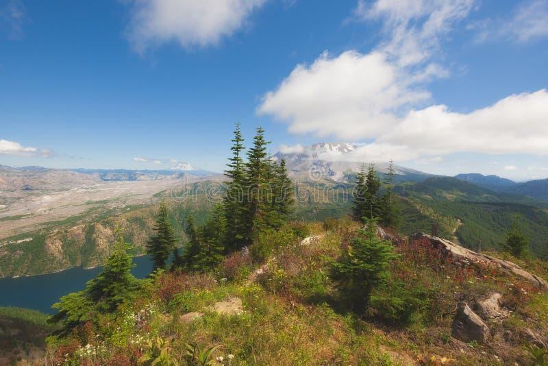 远足城堡峰顶在吉福德Pinchot国家森林 免版税库存图片