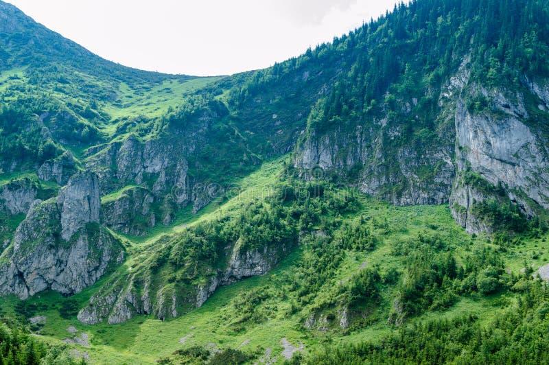 远足的地方 旅行在欧洲 山和小山在Tatra 免版税库存图片