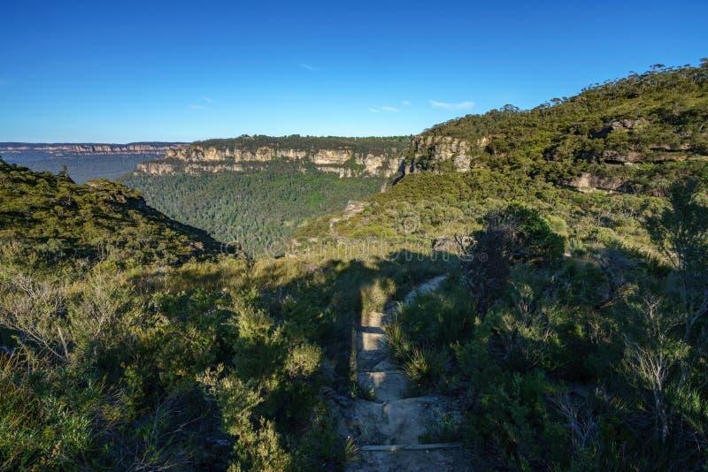 远足盛大clifftop步行,蓝色山,澳大利亚1 图库摄影