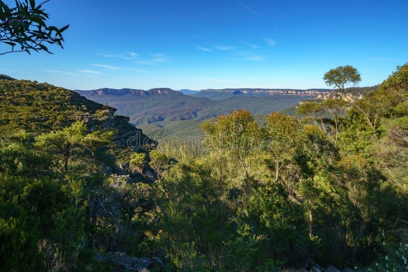 远足盛大clifftop步行,蓝色山,澳大利亚8 免版税库存图片