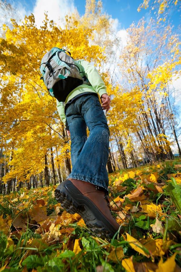 远足者人走的年轻人 免版税库存照片