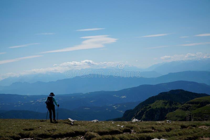 远足者喜欢走在山的美妙的草甸 免版税库存照片