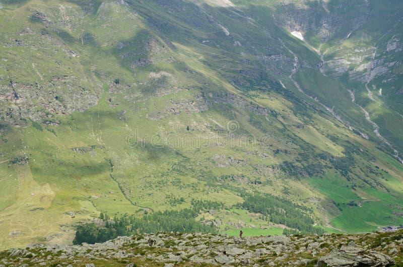 远足者在山步行 免版税库存图片