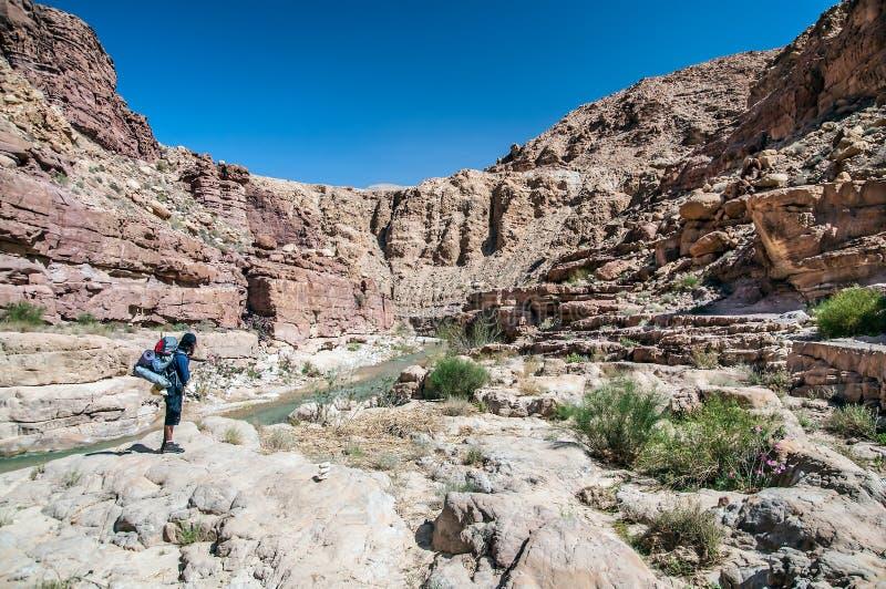 远足者在沙漠 免版税库存图片