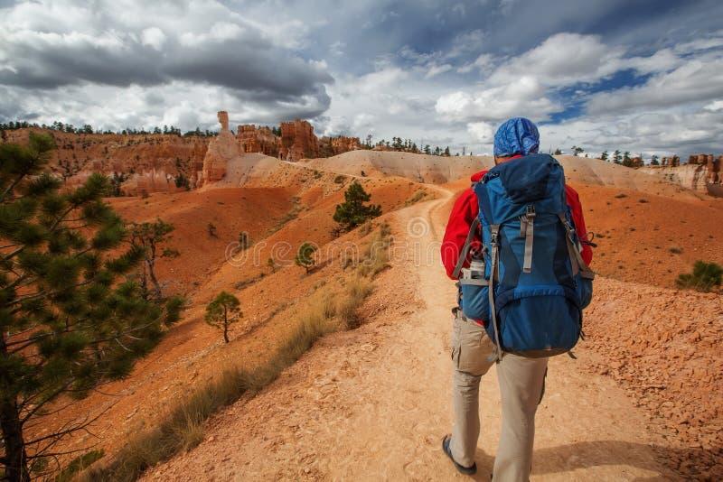 远足者在犹他,美国参观布赖斯峡谷国家公园 库存图片