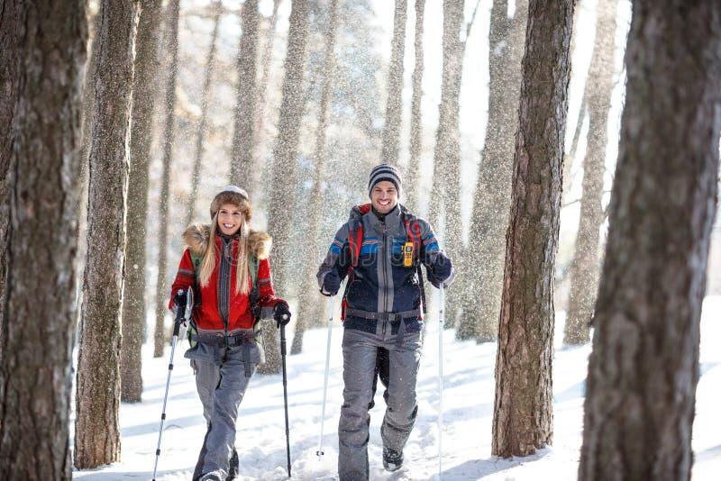 远足者在远足在山的多雪的冬天 免版税库存图片