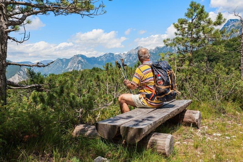 远足者大约观看高山全景的60岁 库存照片