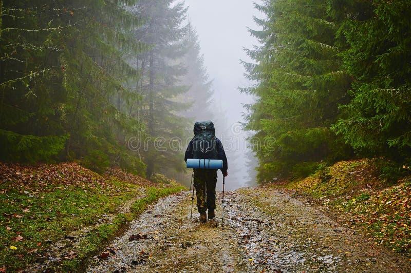 远足者旅游流浪者在有雾的山森林里 免版税图库摄影
