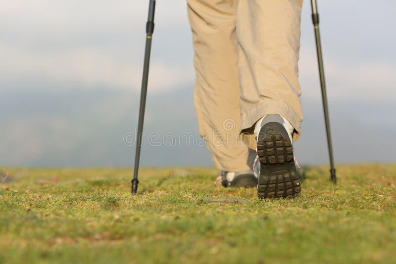 远足者腿后面看法有走在山的杆的 免版税库存照片