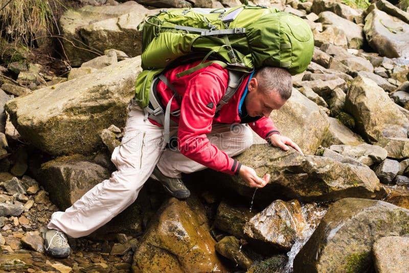 远足者饮用的小河水 免版税库存照片
