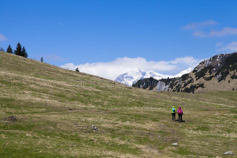 """远足走在山自然的远足的†""""远足者在晴天 免版税库存图片"""