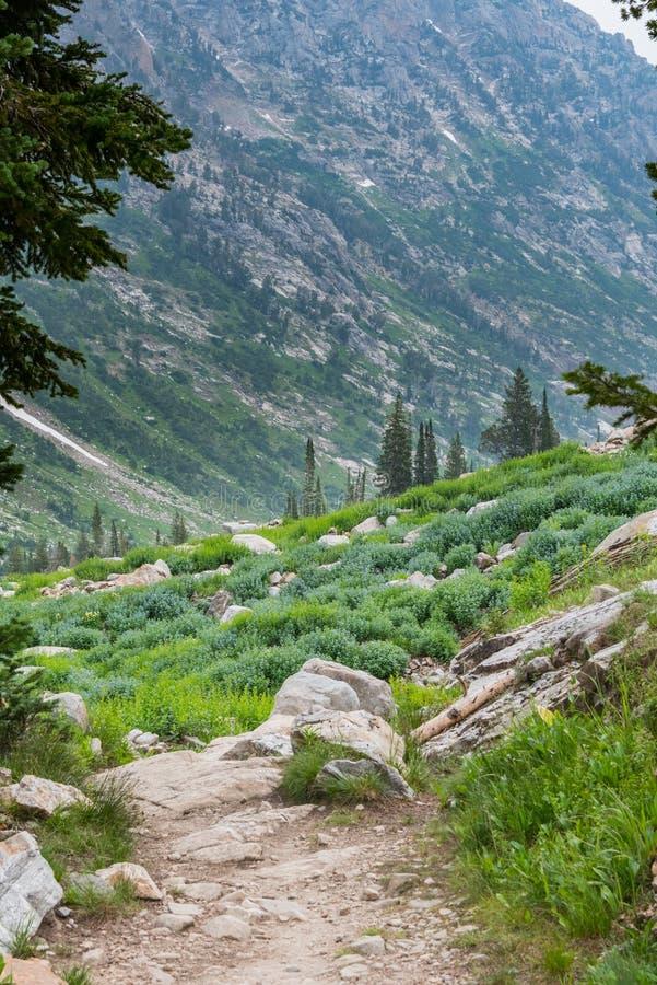 远足通过小瀑布峡谷 免版税库存照片