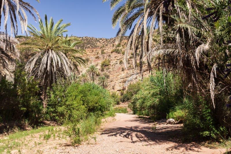 远足道路在阿加迪尔附近的仙谷摩洛哥谷的 库存照片