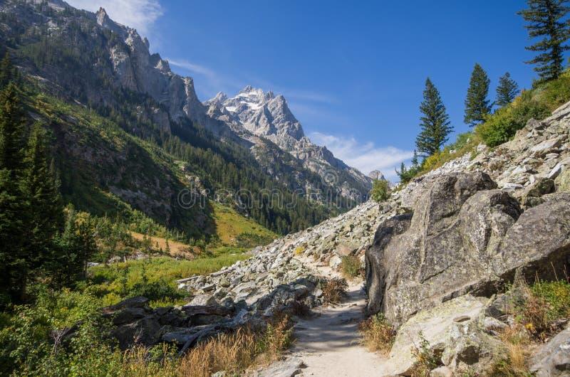 远足道路穿过小瀑布峡谷 免版税图库摄影