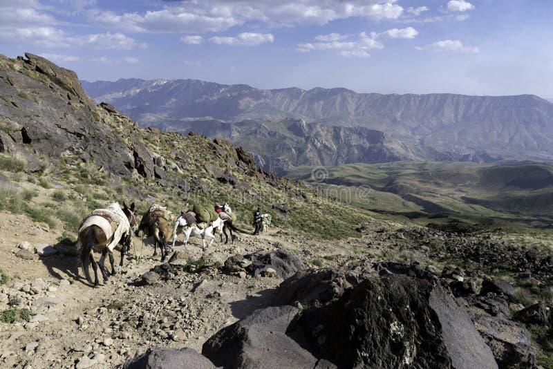 远足Damavand火山在伊朗 免版税图库摄影