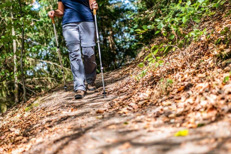 远足schoes和棍子细节视图在森林室外活动的少女妇女本质上 图库摄影