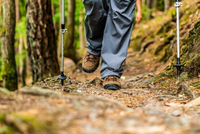 远足schoes和棍子细节视图在森林室外活动的少女妇女本质上 免版税图库摄影