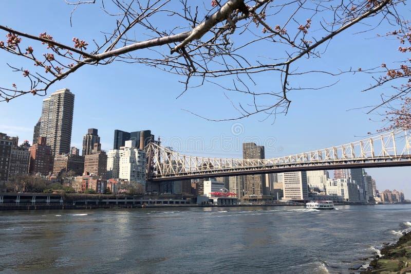 连接曼哈顿中城的皇后区大桥到在East河的罗斯福岛在纽约 库存照片
