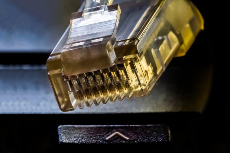 连接的与计算机网络,宏观背景塑料连接器 免版税库存图片