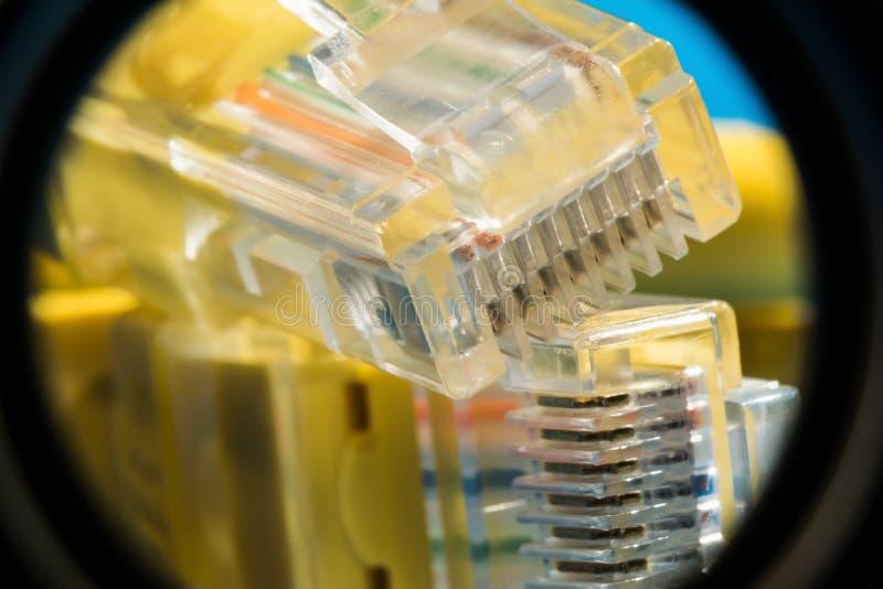 连接的与计算机网络,宏观背景塑料连接器 免版税库存照片