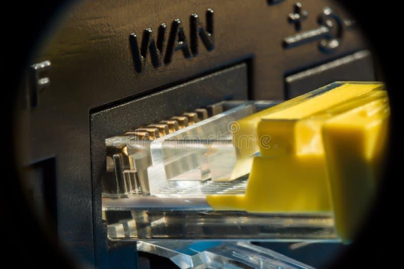 连接的与计算机网络,宏观背景塑料连接器 图库摄影