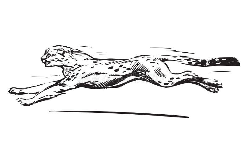 也corel凹道例证向量 向量例证 - 插画 包括有 猎豹, 运行: 123747037图片