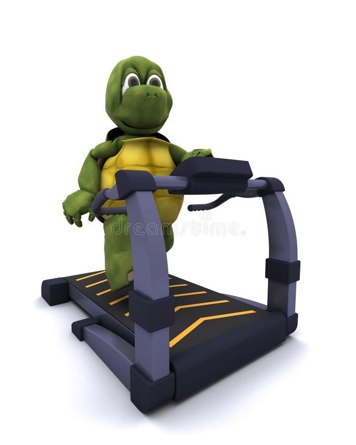 连续草龟踏车 向量例证
