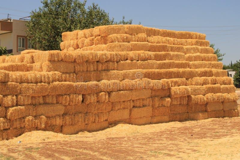连续被堆积的干草 免版税图库摄影