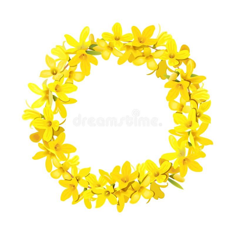 连翘属植物花圈,金钟欢乐装饰诗歌选模板 复活节树花冠 库存例证