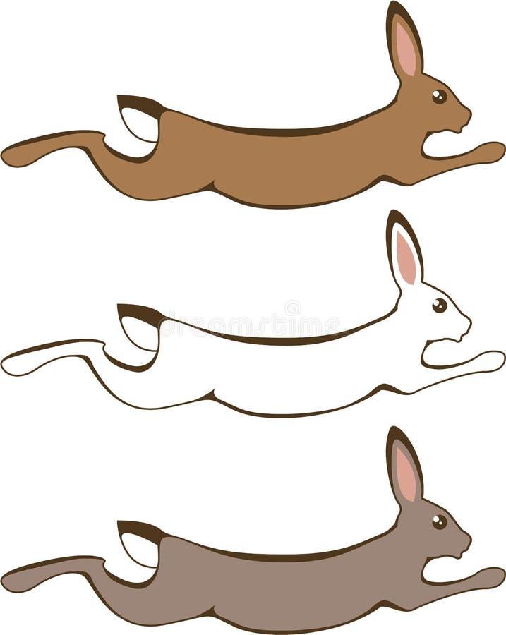 连续兔子 库存例证