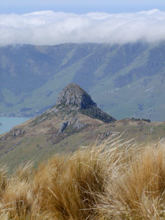 迪亚蒙德哈尔博乌尔新西兰 免版税库存照片