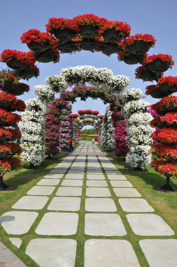迪拜奇迹庭院在阿拉伯联合酋长国 免版税库存图片