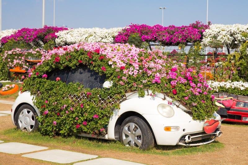 迪拜,阿拉伯联合酋长国- 1月20日:奇迹庭院在迪拜, 1月20日, 免版税库存图片