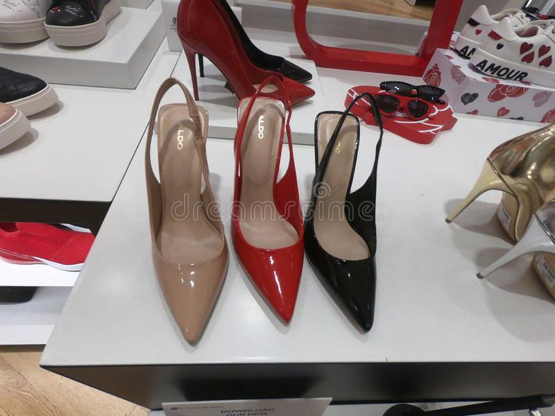 迪拜2019年2月-时髦和经典上流在迪拜购物中心愈合显示待售鞋子在奥尔多商店 库存图片