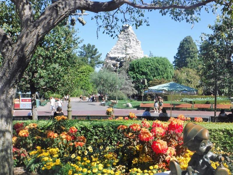 迪斯尼乐园公园长椅 免版税库存照片