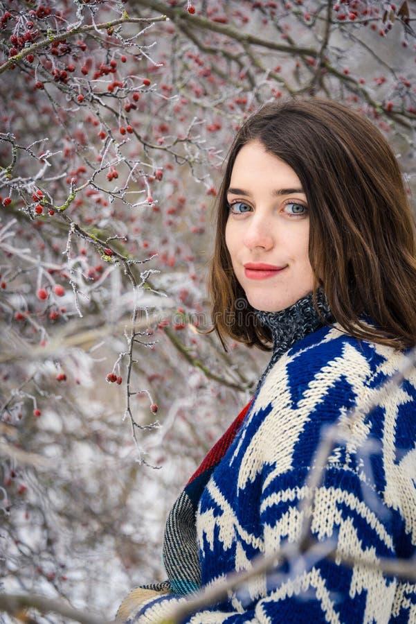 迷人的女孩冬天画象  免版税库存图片