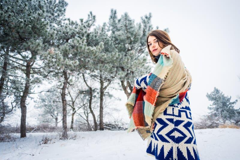 迷人的女孩冬天画象  图库摄影