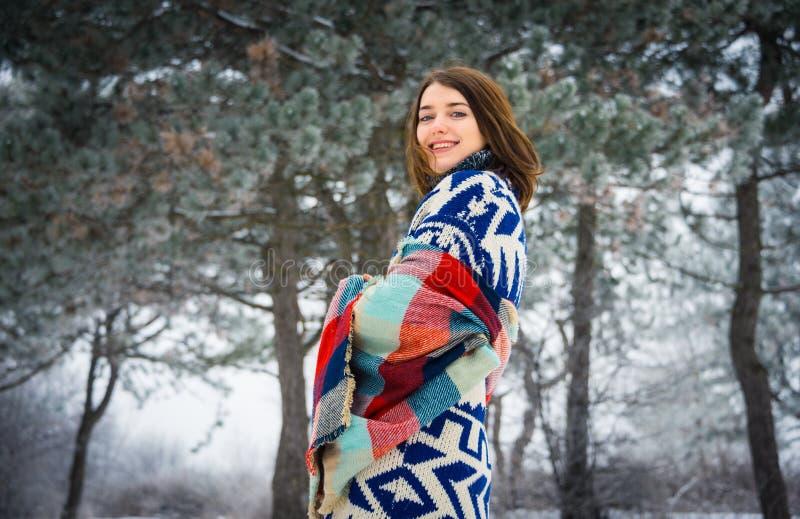 迷人的女孩冬天画象  免版税图库摄影